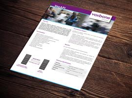 VoxAPI Brochure
