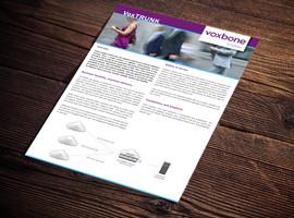 VoxTRUNK Brochure